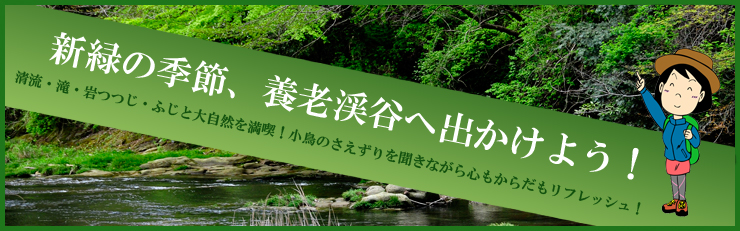 新緑の養老渓谷