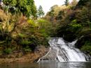 4月の粟又の滝