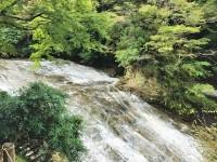 【2016】10月滝上部(雨後)